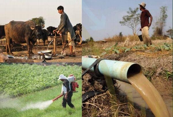 Nuevo programa contra la contaminación agrícola.
