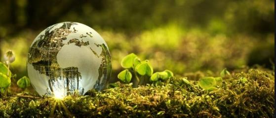 Se establece la estructura orgánica de la Consejería de Fomento y Medio Ambiente.